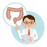 Docteur pour une description du gros intestin Image stock