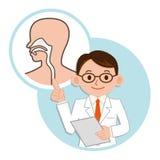 Docteur pour une description du pharynx Images libres de droits
