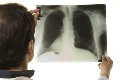 Docteur regardant le rayon X Photo libre de droits