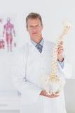 Docteur sérieux montrant l'épine anatomique Photos stock