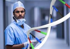 Docteur se tenant avec le brin d'ADN 3D Image stock