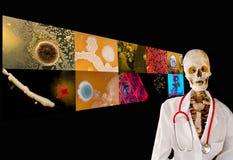 Docteur squelettique donnant une conférence sur la maladie. image libre de droits