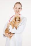 Docteur vétérinaire Image stock