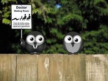 Docteur Waiting Room Photographie stock libre de droits