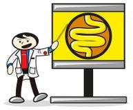 Doctor. Illustration of presentation doctor show human anatomy Royalty Free Stock Photo