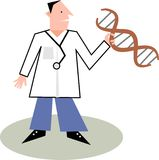 Doctor. A male doctor holding a string of dna genes Royalty Free Stock Images