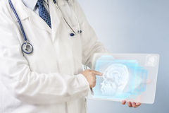 Doctor analyzing brain image Royalty Free Stock Photography