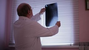 Doctor analyzing x-ray.