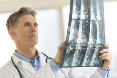 Doctor Analyzing X-Ray Report In Clinic Stock Images