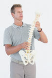 Doctor with anatomical spine Stock Photos