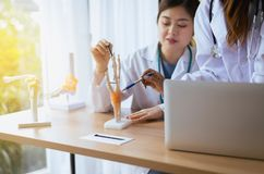 Doctor woman sitting and working on desk together using skeleton hand mockup at hospital office. Doctor asian woman sitting and working on desk together using royalty free stock image
