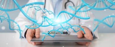 Doctor holding blue digital DNA structure 3D rendering. Doctor on blurred background holding blue digital DNA structure 3D rendering Royalty Free Stock Images