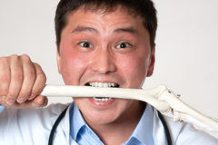 Doctor with a bone Royalty Free Stock Images