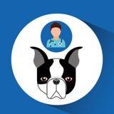 Doctor cartoon veterinarian dog french bulldog Royalty Free Stock Photo