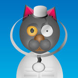 Doctor cat Royalty Free Stock Images