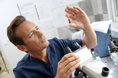 Doctor checking blood samples in lab Royalty Free Stock Photos