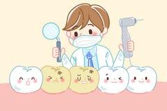 Doctor con el diente dental Fotos de archivo libres de regalías
