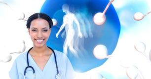 Doctor con el ovario de la reproducción de la esperma para la planificación familiar con el ser humano stock de ilustración