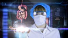 Doctor con la tableta futurista de la pantalla del hud intestino, sistema digestivo Concepto médico del futuro almacen de video