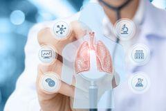 Doctor conducts a study and testing of lung . Doctor conducts a study and testing of human lung royalty free stock image