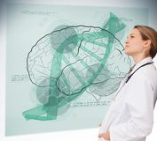 Doctor consulting brain interface Royalty Free Stock Photo