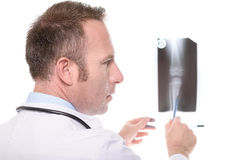 Doctor consulting an x-ray of a knee joint Royalty Free Stock Image