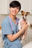 Doctor de la raza mezclada o enfermera y perrito veterinarios Imagenes de archivo