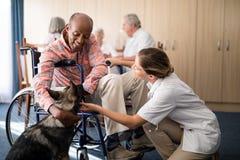 Doctor de sexo femenino alegre que se arrodilla por el hombre mayor discapacitado que frota ligeramente el perrito foto de archivo libre de regalías