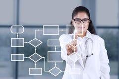Doctor de sexo femenino con esquema del flujo de trabajo Imagenes de archivo