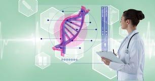 Doctor de sexo femenino que analiza la estructura de la DNA en la pantalla Foto de archivo libre de regalías