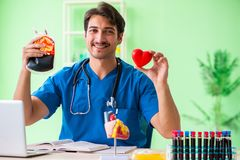 The doctor doing blood analysis in the lab. Doctor doing blood analysis in the lab Royalty Free Stock Photos