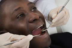 Doctor Doing Dental Check Up Of Patient Royalty Free Stock Photo