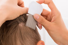 Doctor Doing Treatment On Boy`s Hair. Close-up Of Female Doctor Doing Treatment On Boy`s Hair With Comb stock images