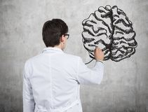 Doctor examines brain. Drawing on wall Stock Photo
