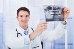 Doctor examining dental x-ray in hospital Royalty Free Stock Photo