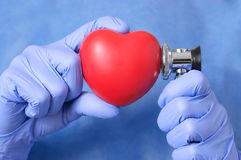 Doctor examining a heart Stock Photography