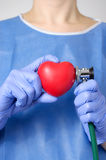 Doctor examining a heart Royalty Free Stock Images