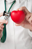 Doctor examining a heart Stock Image