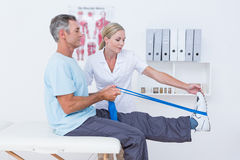 Doctor examining her patient back legs Royalty Free Stock Image