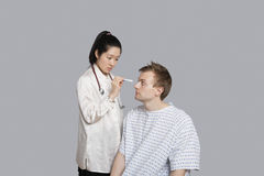 Doctor examining patient's eye with flashlight Stock Image