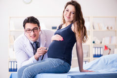 The doctor examining pregnant woman patient. Doctor examining pregnant women patient Royalty Free Stock Photo