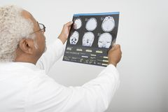 Doctor Examining X-Ray Report In Clinic Royalty Free Stock Images