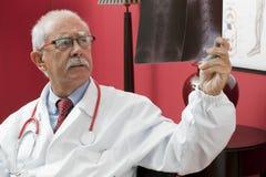 Doctor examining x-ray Royalty Free Stock Image
