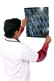 Doctor examining the X-ray Royalty Free Stock Image