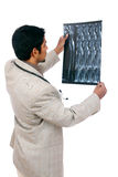 Doctor examining the X-ray Royalty Free Stock Photo