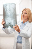 Doctor examining X-ray. Royalty Free Stock Photos