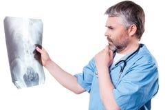 Doctor examining X-ray image. Stock Image