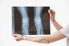 Doctor examining X-rays Stock Image