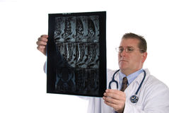 Doctor examins an Xray Royalty Free Stock Images