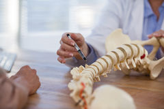 Doctor explaining anatomical spine to patient. In medical office royalty free stock photography